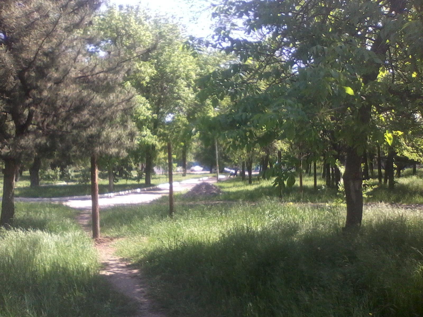 парк на Соцгороде (2)