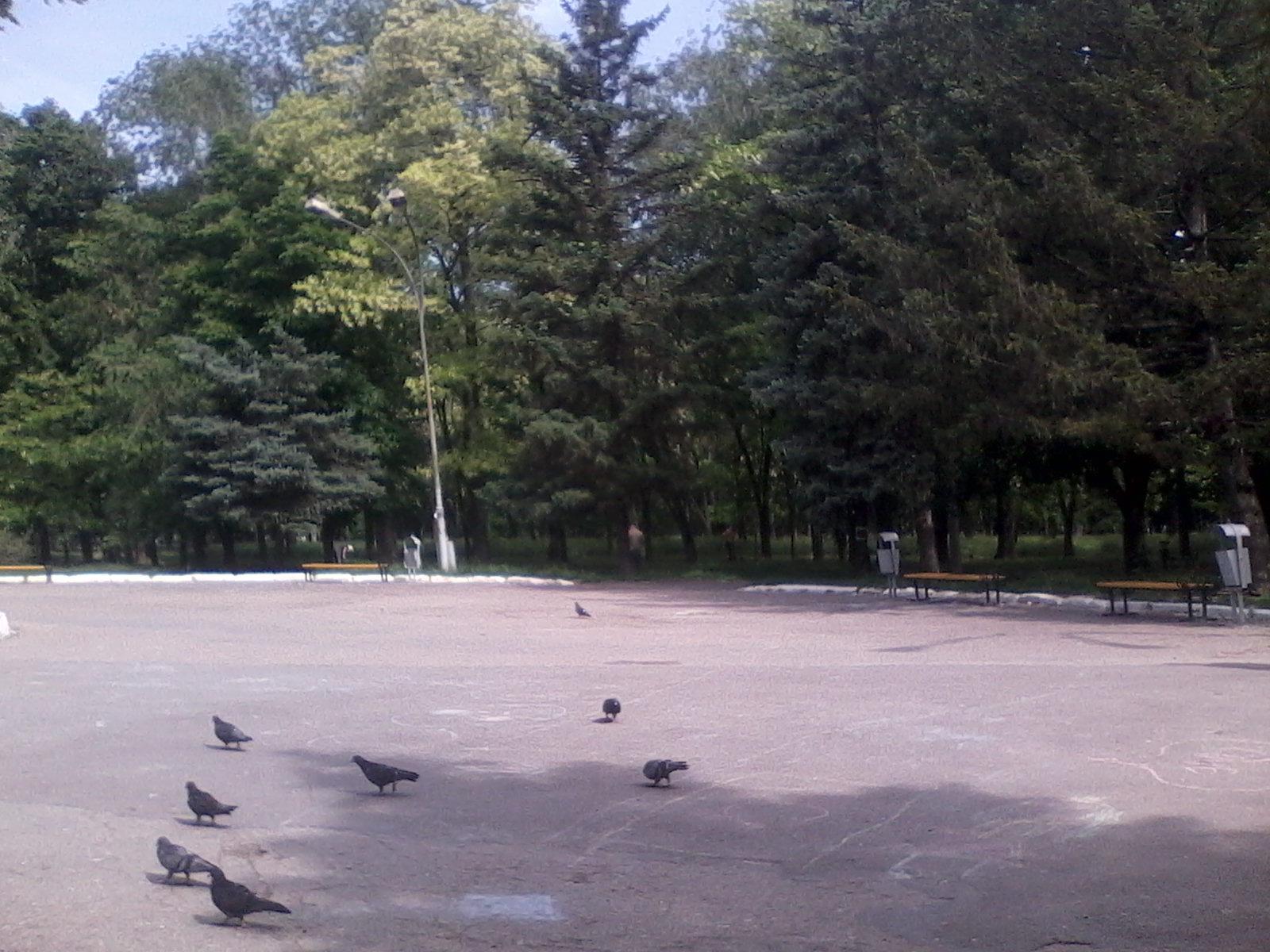перенос площадки на соцгороде (1)