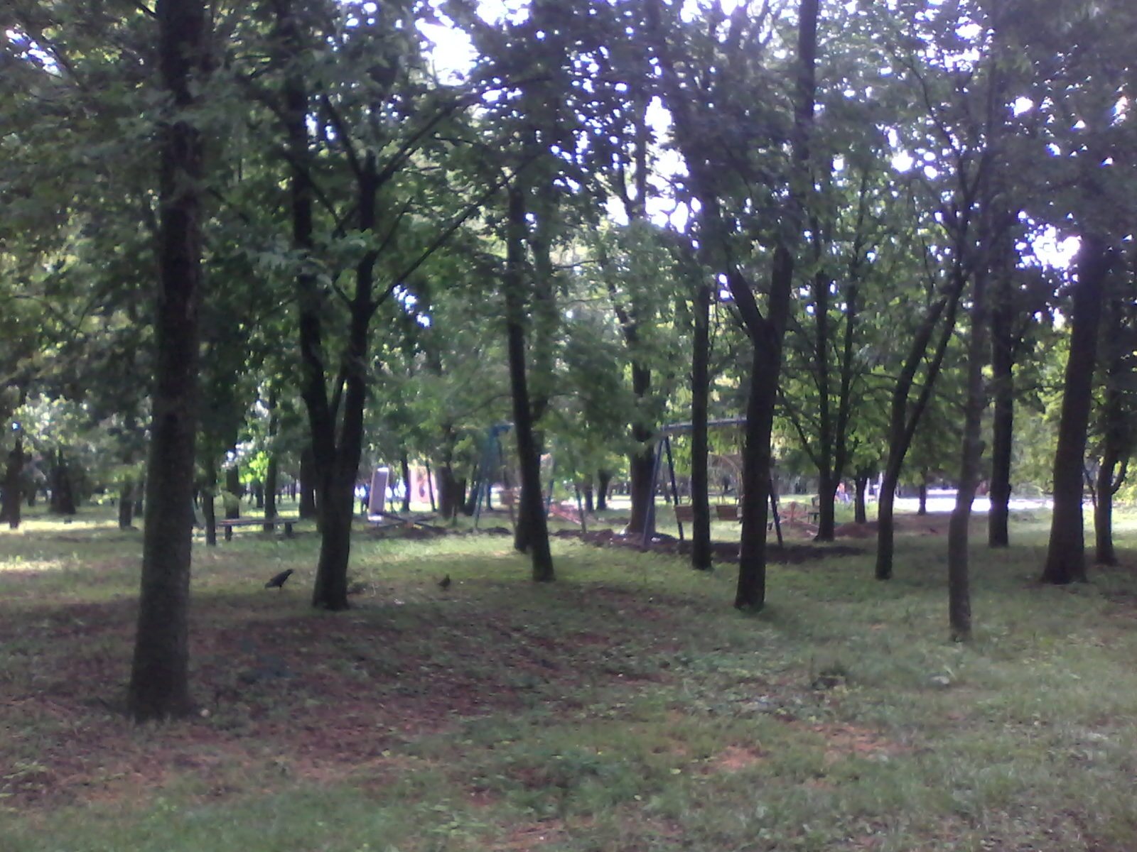 перенос площадки на соцгороде (2)