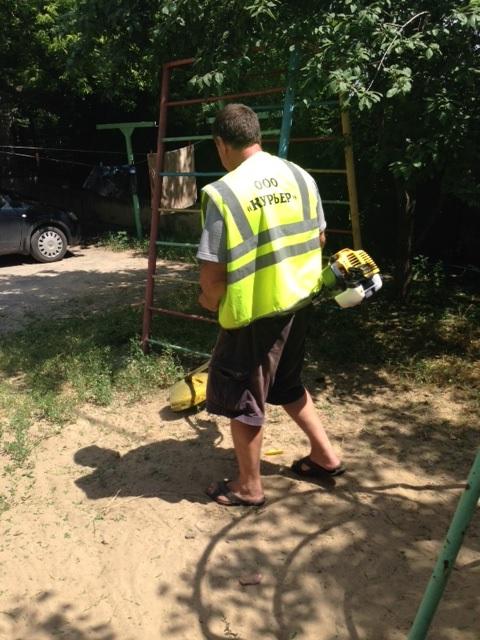 Новочеркасец проявил инициативу и покосил траву перед домами горожан
