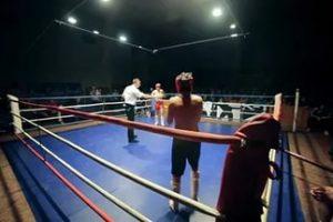 Новочеркасские спортсмены отличились в кикбоксинге