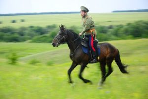 Фото: beesona.ru