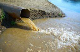 Новочеркасский Водоканал загрязняет реки Тузлов и Аксай